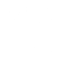 Cerbera Gallery | Crossroads Arts District | KCMO
