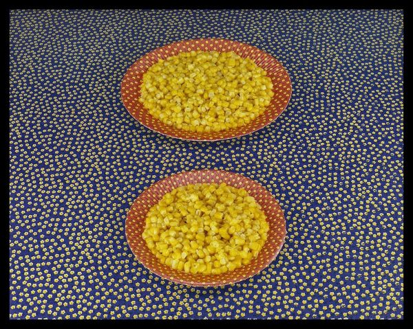 Two Plates of Corn - Sandy Skoglund