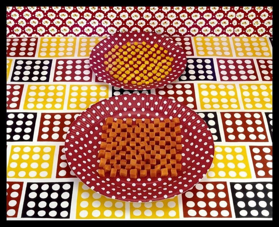 Cubed Carrots and Kernels of Corn - Sandy Skoglund