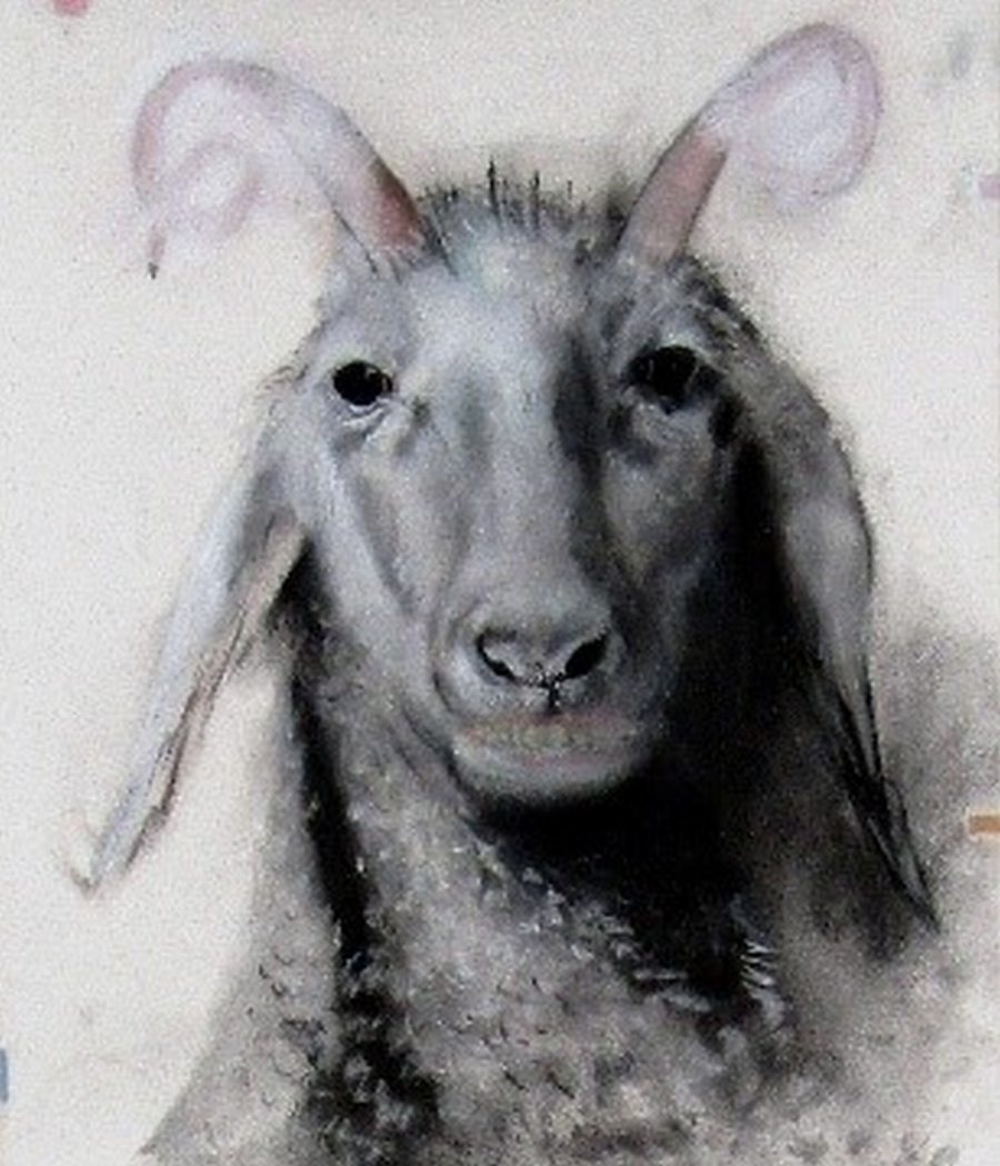 "The Goat - Title: ""The Goat"""